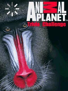 Free Nokia Asha 302 Animal Planet Trivia Challenge Software Download
