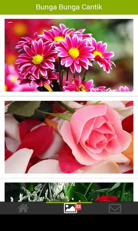 Free Google Android 40 Bunga Bunga Cantik Software Download