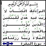 Palm Quran