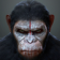 Dawn of the Planet of the Apes LWP 1
