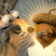 Ice Age Live Wallpaper 4