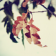 Branch with leaves HD LWP