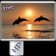 Dolphin Live Wallpaper HD