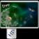 Dandelion Live Wallpaper HD