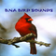 Bna Bird Sounds