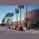 Arizona State University Community