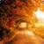 Beautiful Autumn Live Wallpaper HD