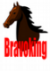 Bravoking