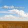 Brush News-Tribune