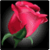 Count Your Roses to Decode Your Valentines Hidden
