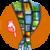 Fast Video Downloader new