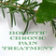 Holistic Chronic Pain Treatment