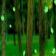 Green Forest Live Wallpaper