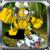 LOL World: Blitzcrank's Rescue