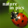 Nature in pics