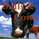 The bulls and cows 91