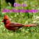 Birdlw3