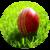 Top Cricket Commentators